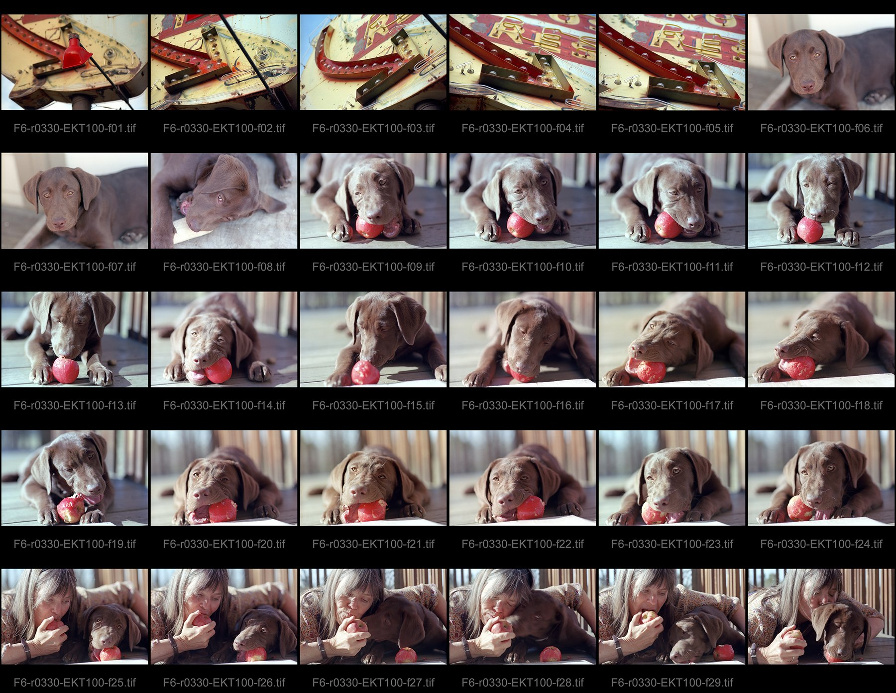 Hybrid Workflow: Remember Contact Sheets?