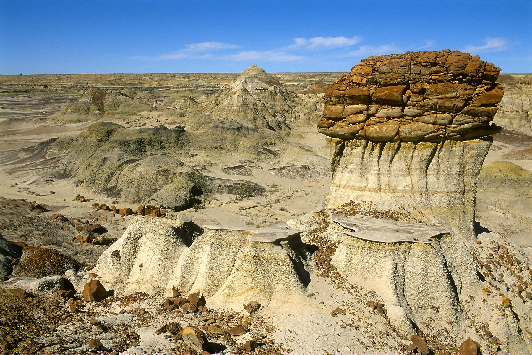 Bisti/De-Na-Zin Wilderness, New Mexico (2016)
