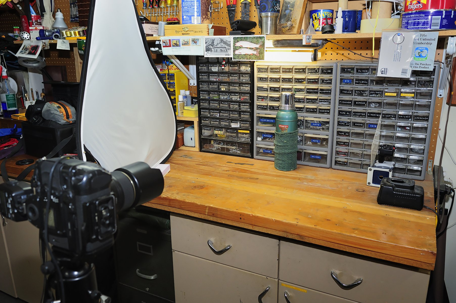 The setup: The F6 with the Nikon SU-800 Commander head mounted in the hot shoe; the Nikon SB-800 Speed Light (at left behind the diffusion panel) and the Nikon SU-R200 Speed Light at right with the white diffusion panel in front of it.