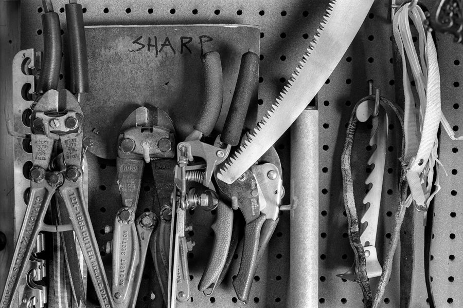 frame 12- SHARP - The Shop, Colorado